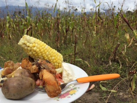 comida de minga - Foto: Lisa Couderé