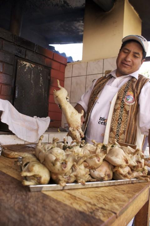 Cuyes en Peru - Foto: Lotte van Oudheusden